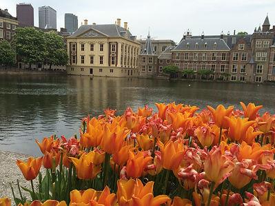 города и замки Голландии