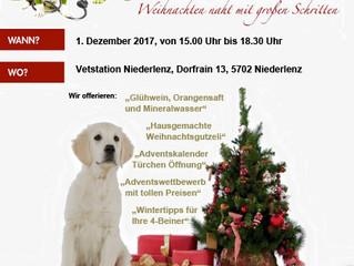 Adventskalender der Vetstation Niederlenz - Wir öffnen das erste Türchen