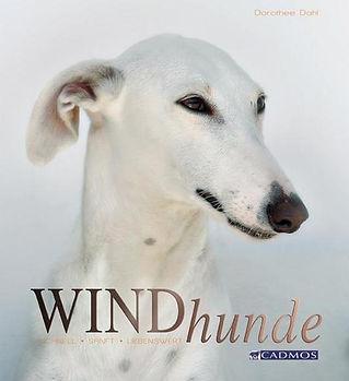 windhunde.jpg