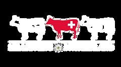 Millrivers_Switzerland_Zeichenfläche_1(1