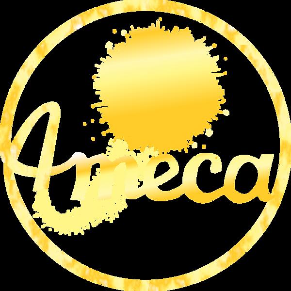 AMECA%20logo%20transparent%20(2)_edited.