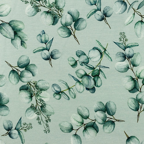 Jersey Eukalyptus grün 0,5m