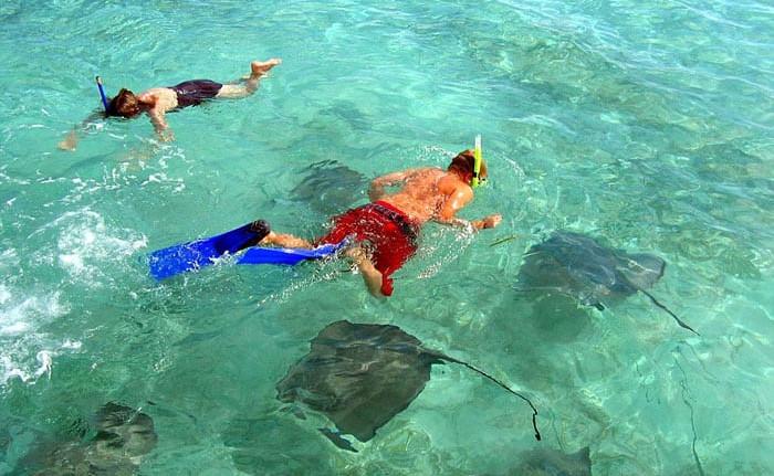 Enjoy a snorkeling excursion!