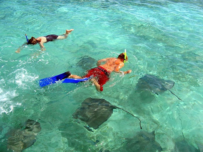 Enjoy a snorkeling excursion!