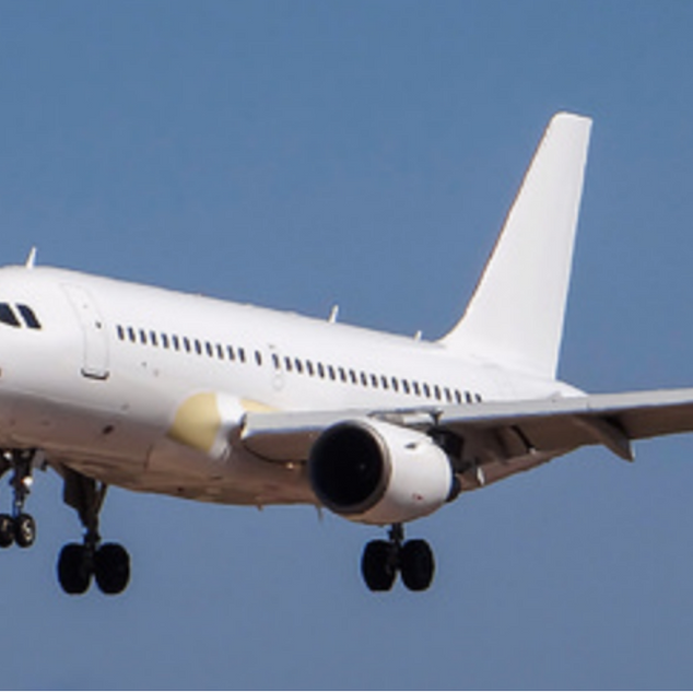 A319 Demo, Test flight
