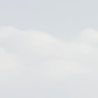 A320 TRI | B737 TRI