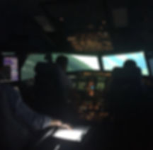 SIM A320 TRI Instructor Course / SFI Training.jpg