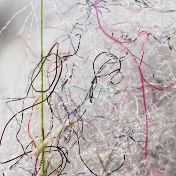 Lignes et textures8, 2015, 10X10 100$