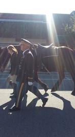 Our beloved Caparisoned Horse