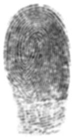 fingerprintswhite2.jpg