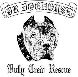 dr doghouse pitbull rescue los angeles ca XXL Bully Pits pitbull rescue studio city ca