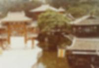 荔園宋城舊照片 Lai Yuen Old Photo