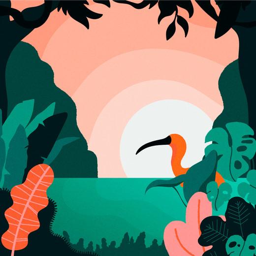 illustration-3.jpg