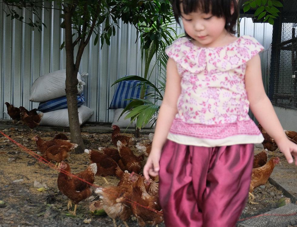 ชุดไทยเด็ก J7Pate-pink