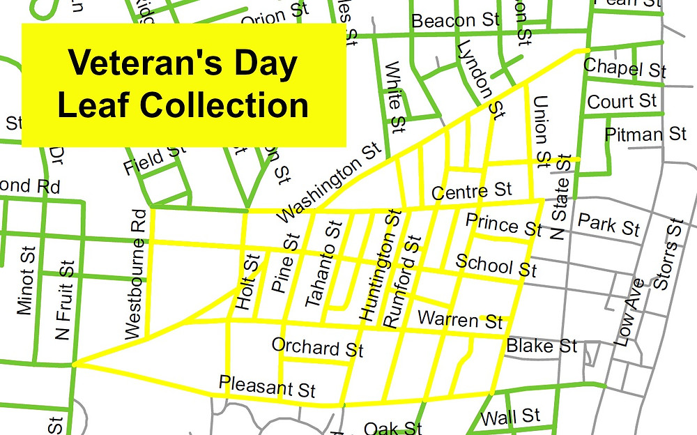 Veteran's Day Leaf Collection (Yellow)
