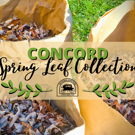 Concord Spring Leaf Collection