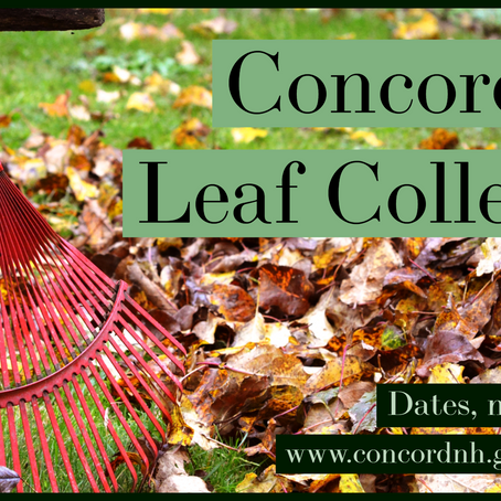 Concord Fall Leaf Collection Returns October 28th