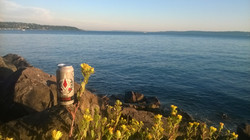 The Beauty of Puget Sound
