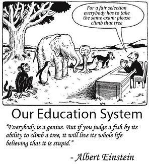 ALBERT EINSTEIN  TREE EDUCATION.jpg
