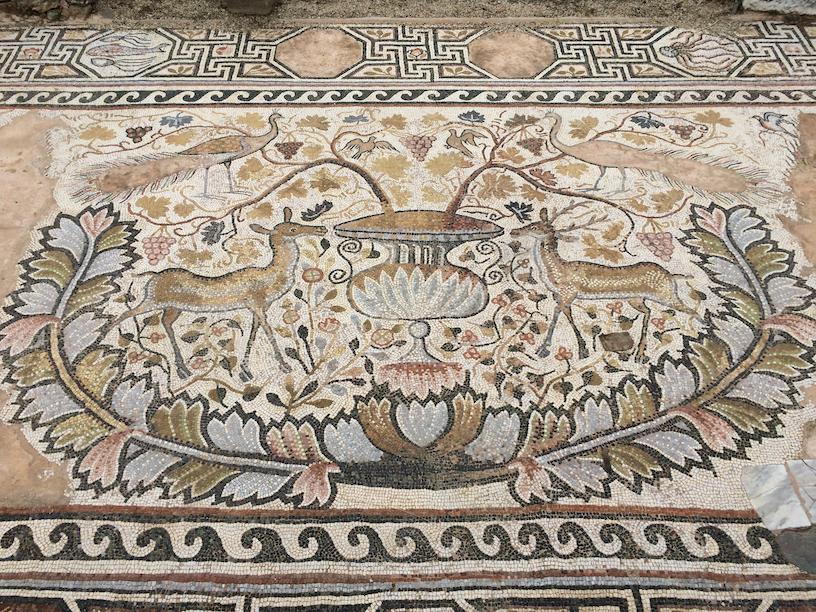 Floor mosaics at Heraclea