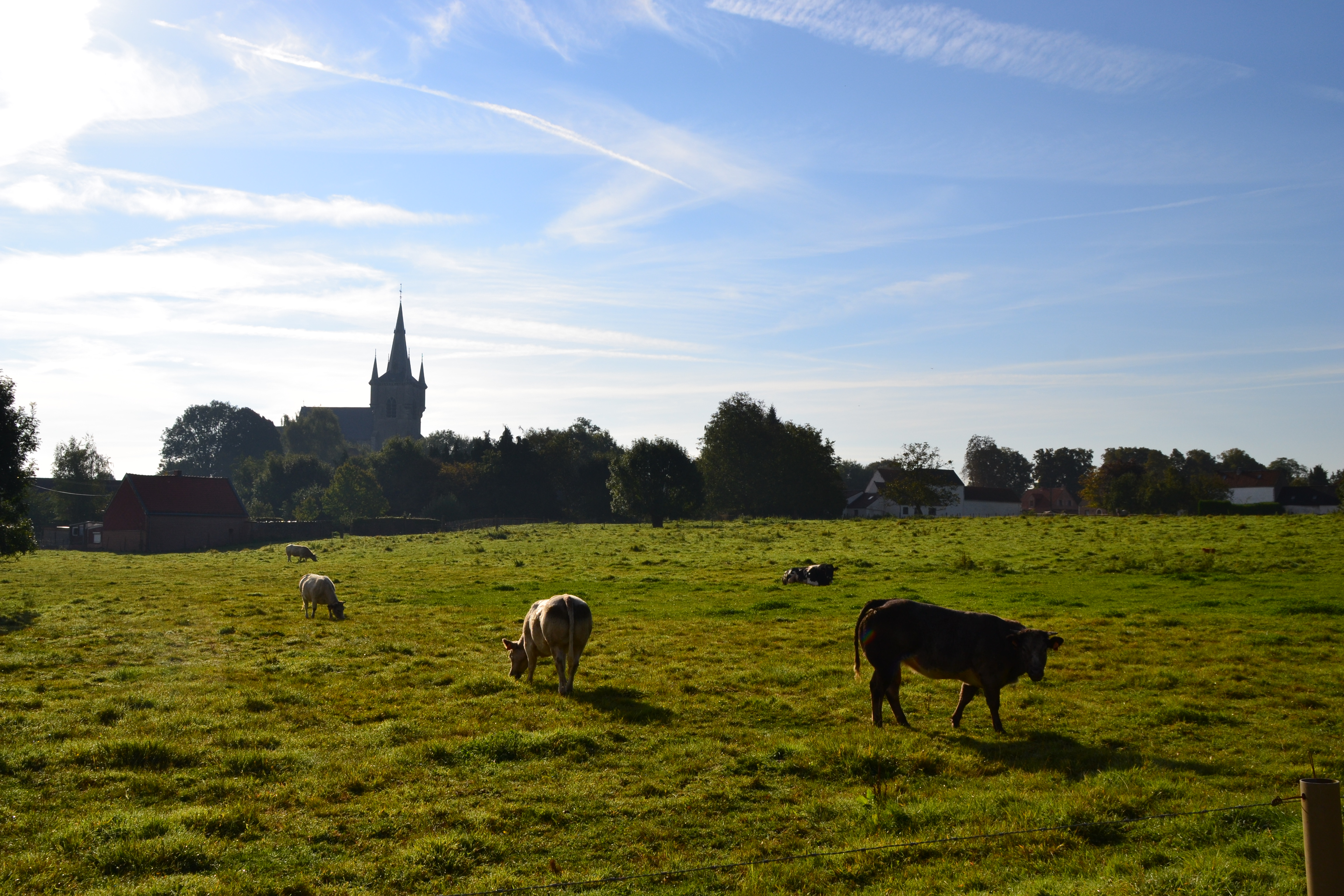 Panoramique de notre campagne...