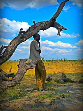 A Guide Gathers Shade, Botswana