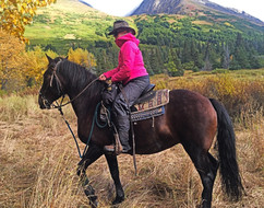 Womens Adventur Travels-Alaska-horse.jpg