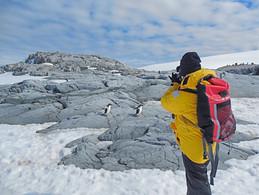 5 - Antarctica - Karen Loftus - Womens A