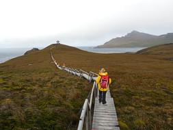 3 - Antarctica - Karen Loftus - Womens A