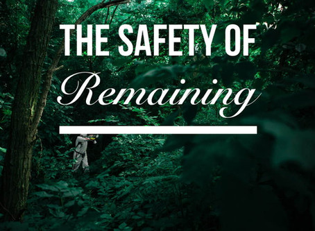 Live Bravely: The Safety of Remaining