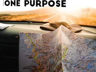 Live Bravely: Many Plans, One Purpose