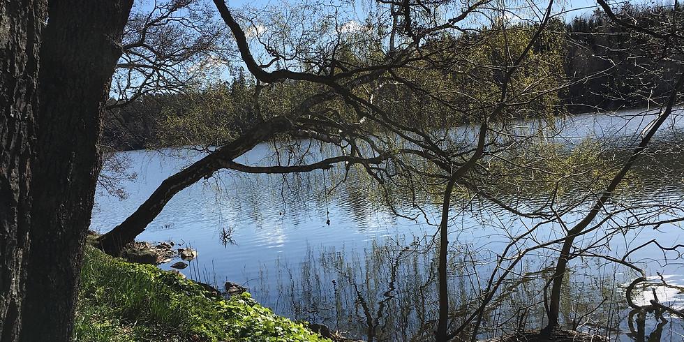 Östra Järvafältet - Välkommen att fira Mors dag med ett välgörande skogsbad