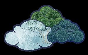 樹樹雲.png