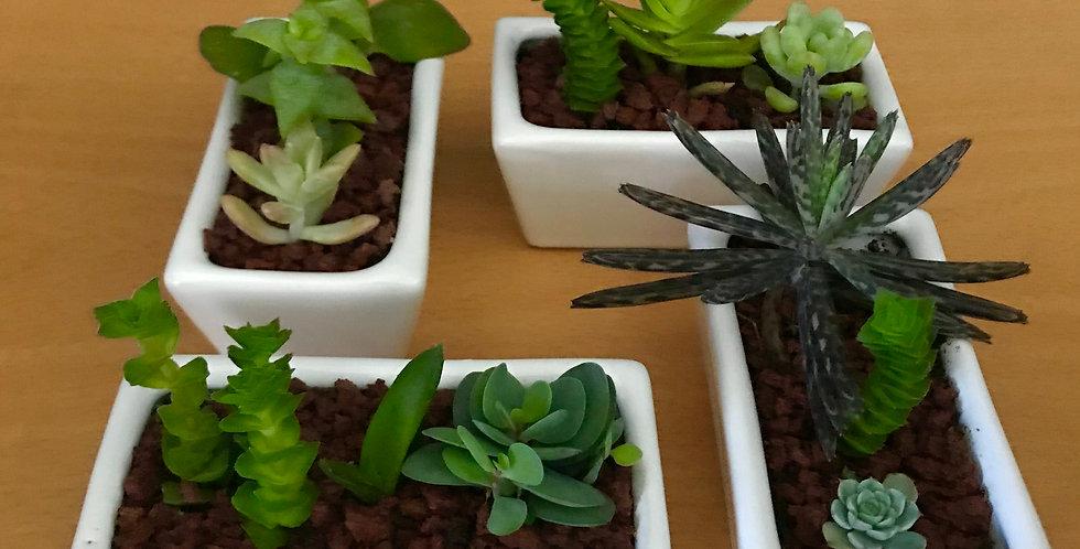 Mini Garden Jardinera