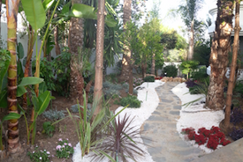 New - Path leading to side walkway.png