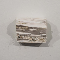 """remains 2018, 5""""x4""""x3"""""""