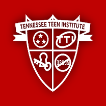 TeenInstLogo.png
