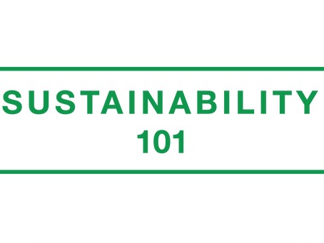 Sustainability 101: Lesson 1, Origin and Definition