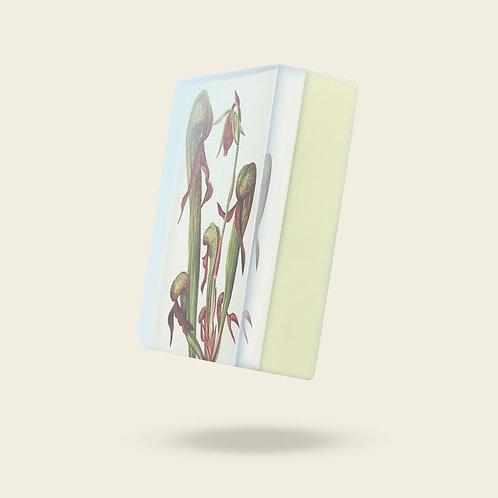 BODY SOAP: THE BOTANIST: CARNIVOROUS PLANTS Print In Vegan Organic Soap