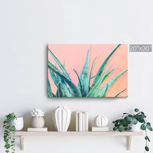 'Aloe Need' Wrapped Canvas Succulent Wall Art