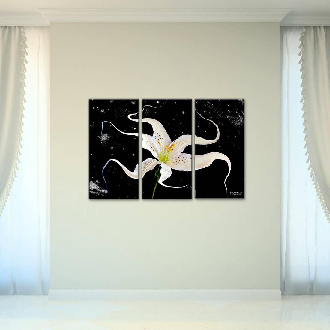'Bruce Bain 'Celestial Flower' 24x36 inc