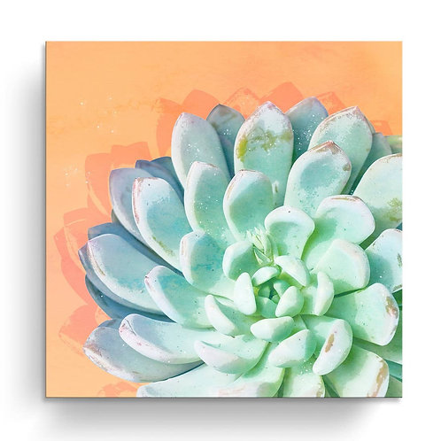 'Awaken IV' Wrapped Canvas Succulent Wall Art
