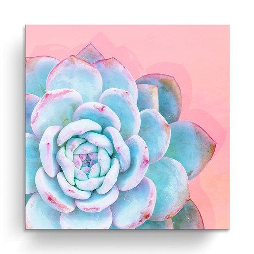 'Awaken I' Wrapped Canvas Succulent Wall Art