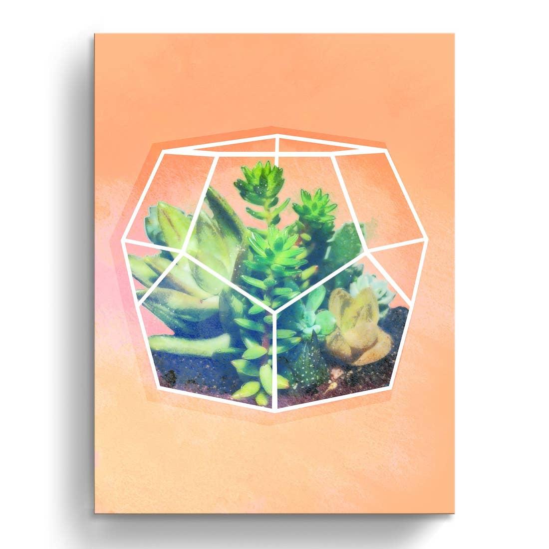 'Terrarium Orange' Wrapped Canvas Succul