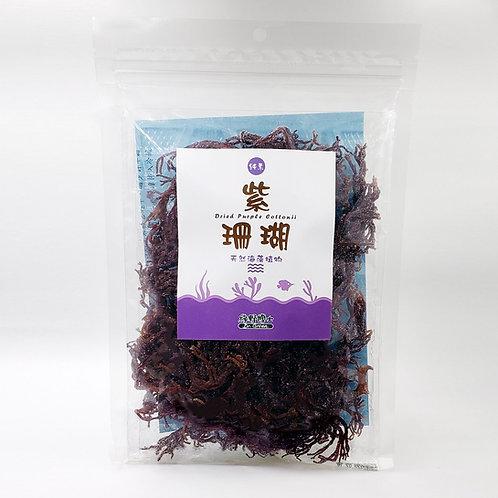 紫珊瑚 Dried Purple Cottonii