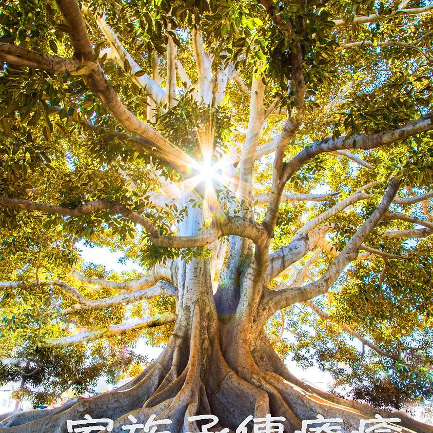 家族承傳療癒之旅  (2021-E212-088)