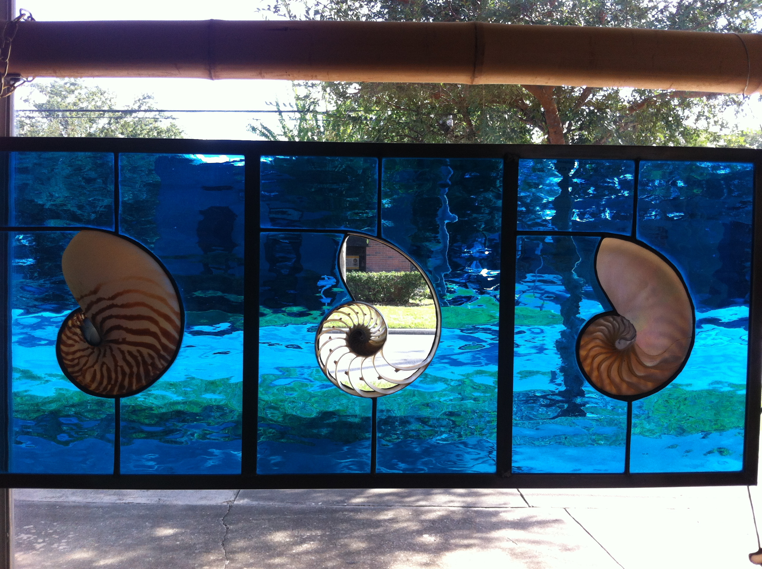 Sliced Nautilus Shell Panel