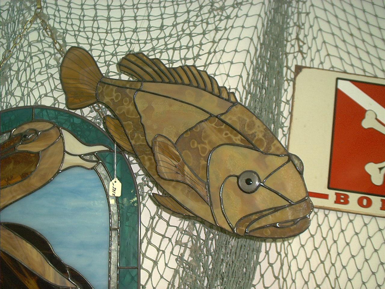 FISH 003.jpg