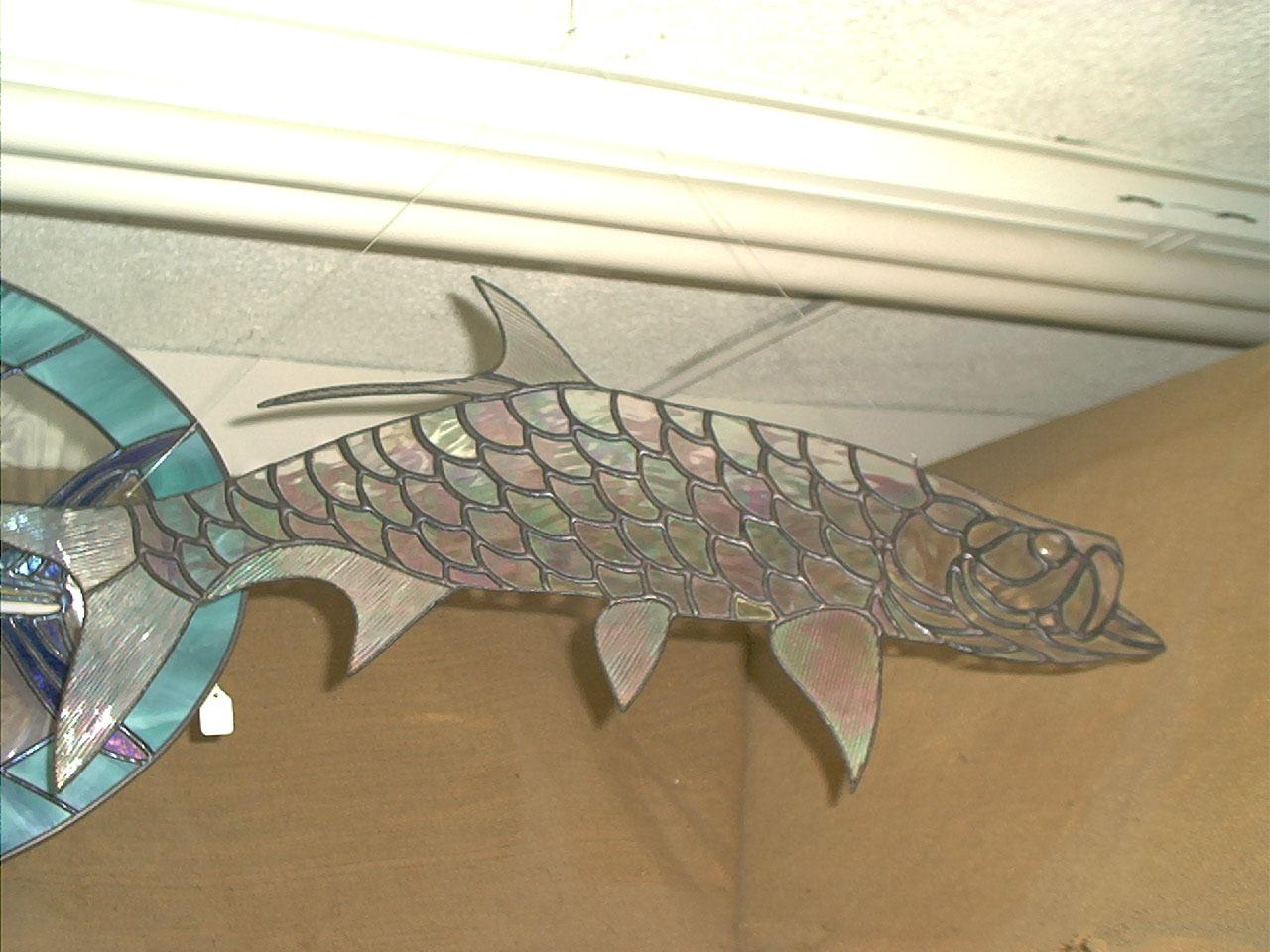 FISH 031.jpg