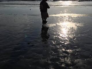大好きな海